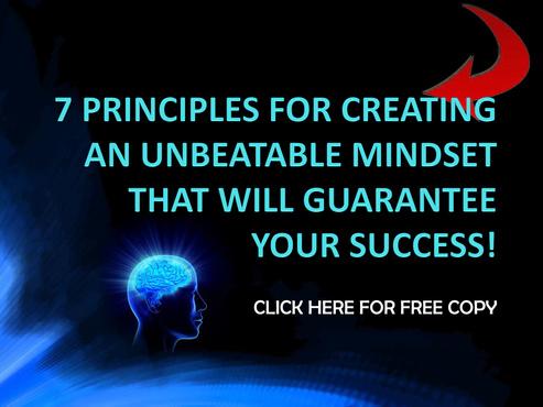 7_principii